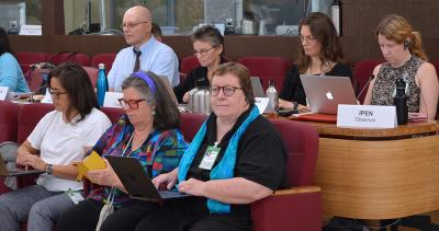 IPEN Co-Chair, Pamela Miller (front), and IPEN Advisors participate in the POPRC.
