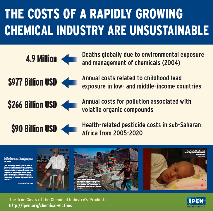 IPEN UNEA2 poster- costs