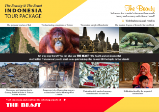 Indonesia Beauty and the Beast front