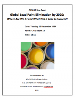 Lead Paint Elimination OEWG2 side event flyer