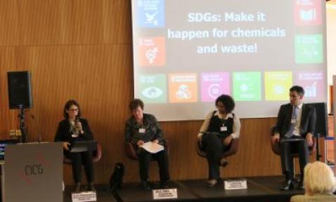 Olga Speranskaya speaking at the SDGs panel (Photo by Eugeniy Lobanov)