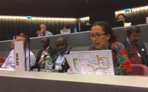 Semia Gharbi (AEEFG) giving an intervention at the Mercury Treaty COP1.