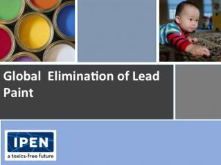 Global Lead Paint Elimination slide