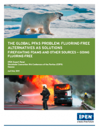 Global PFAS Problem cover