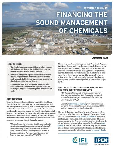 Executive Summary: Financing the Sound Management of Chemicals