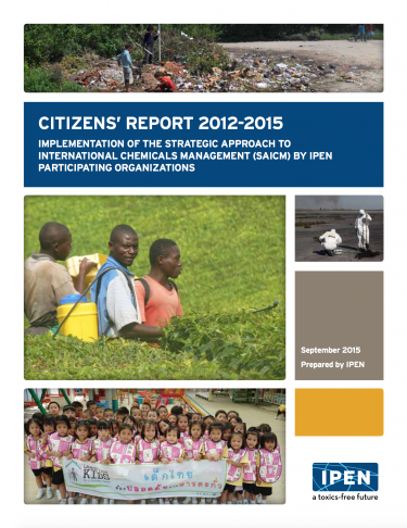 Cover of IPEN 3-year Report